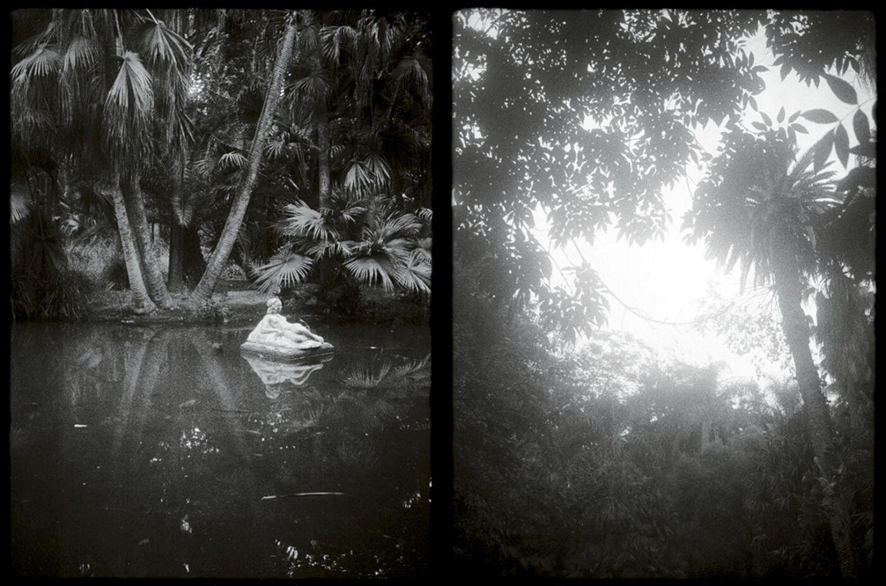Una estatua en un estanque y el cielo visto a través de unas palmeras