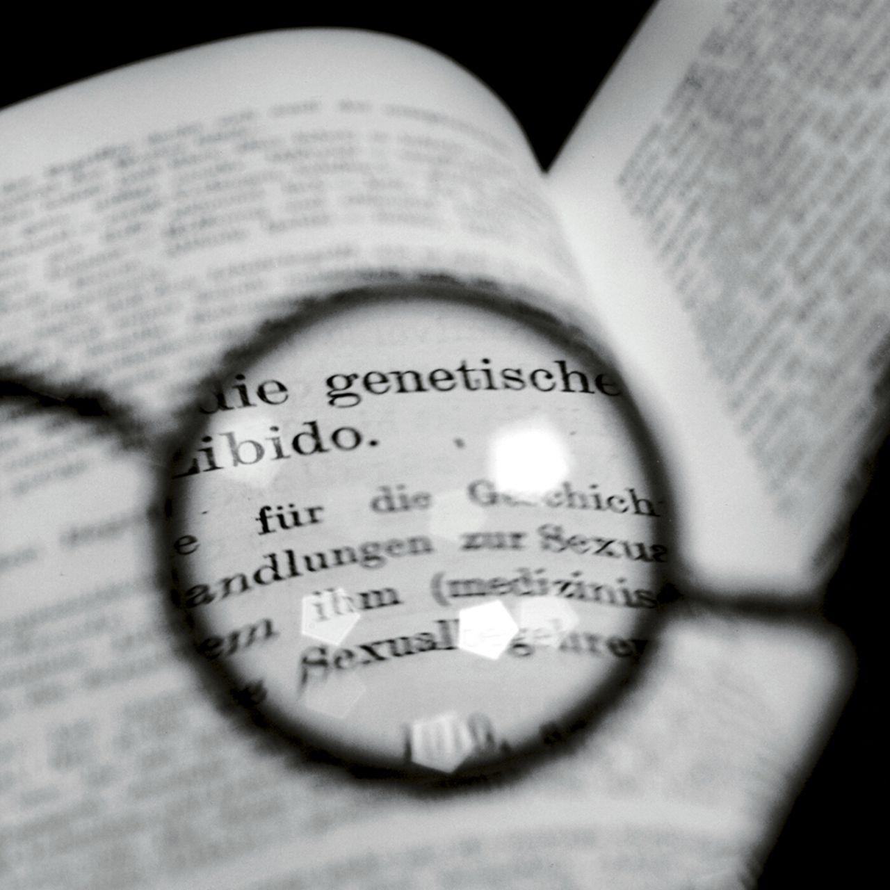 Las gafas de Freud, viendo un texto de Jung ii, 1998