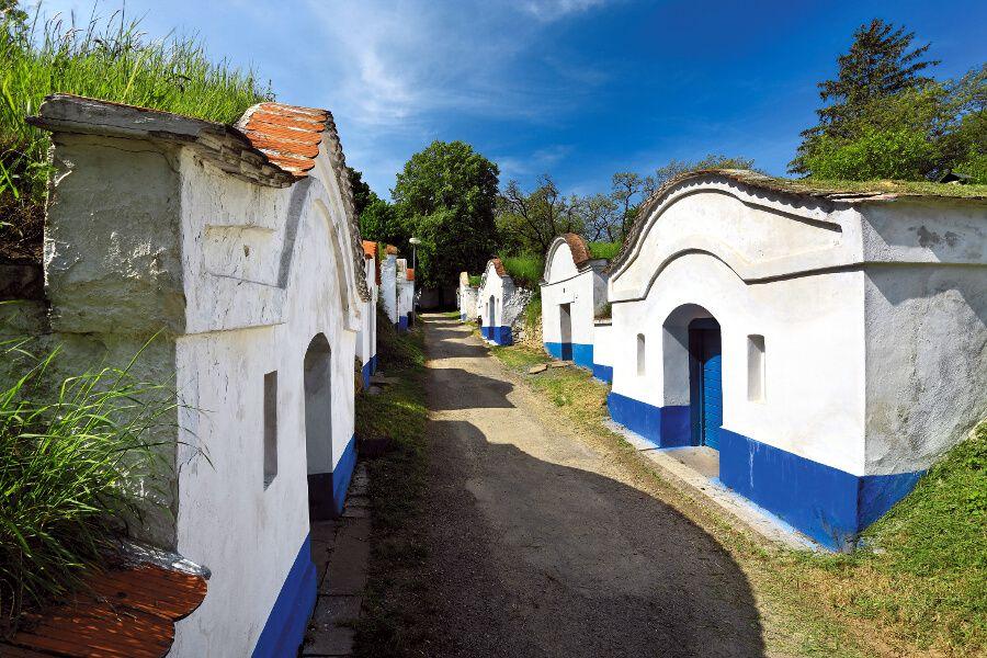 Bodegas. Moravia del Sur