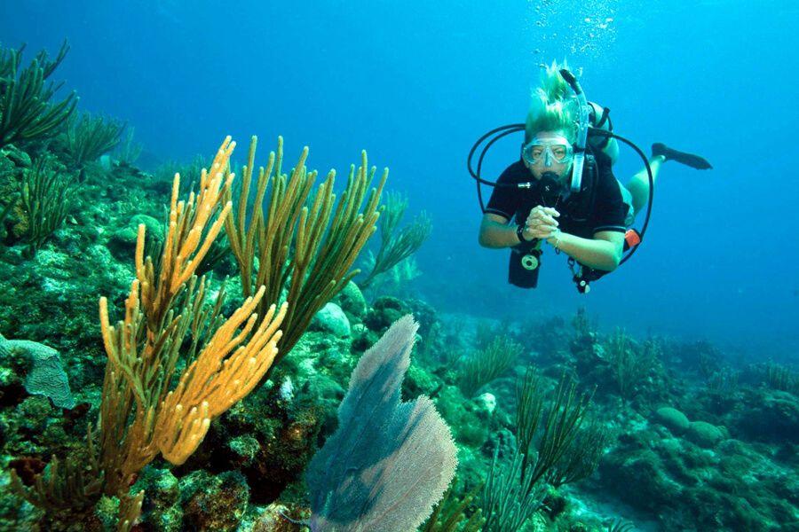 Negril Fun Diving