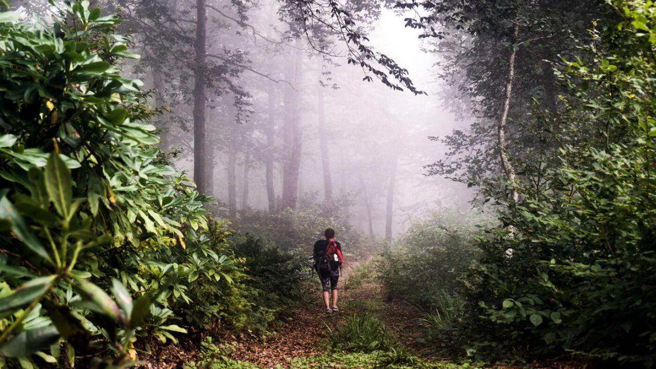 Parque Nacional Mtirala