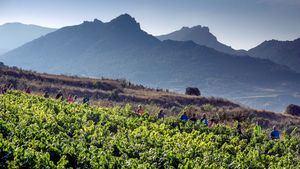 Alternativa a la ruta oficial del Camino de Santiago, que atraviesa la Rioja Alavesa