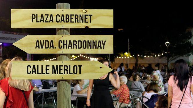 XX edición del Festival del Vino, feria de referencia del enoturismo estival