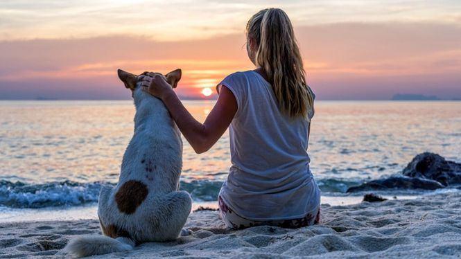 Viajar con mascota, una tendencia que se va abriendo hueco en el mercado turístico