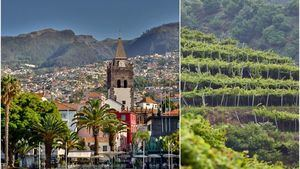 La deliciosa y exótica fruta de Madeira