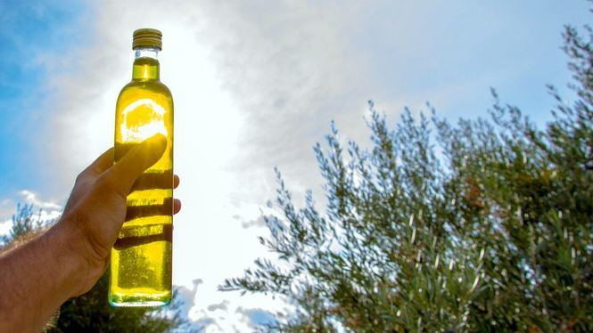 Millones de turistas de todo el mundo descubren el aceite de oliva