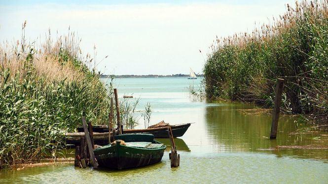 Paseo en barca entre cañas y barro