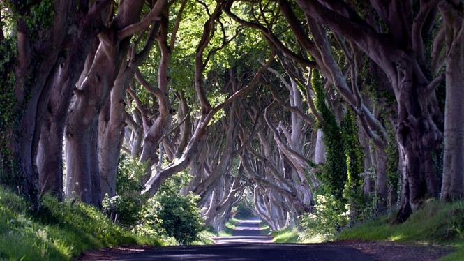 El autor de la serie ha visitado las increíbles localizaciones de Territorio Juego de Tronos