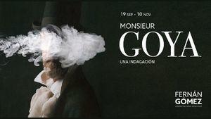 Monsieur Goya, una indagación