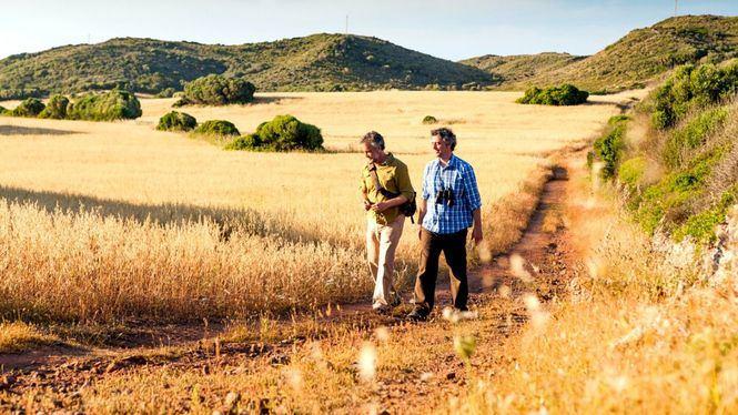 Senderismo en Menorca por las 20 rutas de su fascinante Camí de Cavalls
