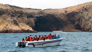 Islas Palomino e Islas Ballestas, un sorprendente conjunto de islas en Perú