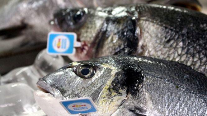 Pescados para la gastronomía del siglo XXI