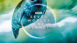 Emirates, emitirá el documental Seven Worlds, One Planet a bordo
