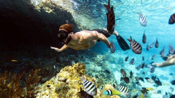 Las Bahamas se implican en la erradicación del plástico a partir del 1 de enero 2020