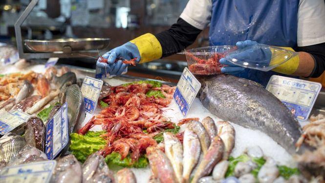Visitas guiadas al Puerto pesquero y lonja de Rosas
