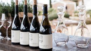 Torralbenc, Mejor Hotel Enoturístico en los International Wine Challenge Merchant Awards Spain 2019