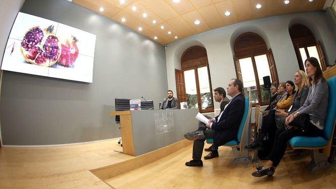 Costa Blanca refuerza su oferta en temporada baja con un producto de turismo industrial