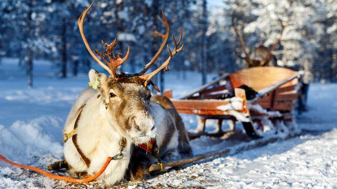 Destinos navideños irresistibles para enamorase de la Navidad
