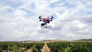 Drones e inteligencia artificial para una viticultura de precisión