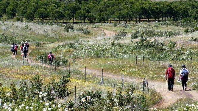 El Camino de Santiago desde Alentejo y otras novedades del destino portugués en Fitur 2020