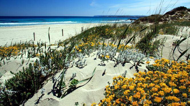 Formentera, más de una década apostando por el turismo sostenible