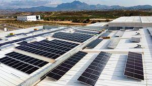 Calconut celebra el Día de la Naturaleza instalando 1.214 placas solares en su nuevo centro de operaciones