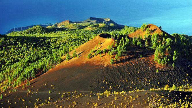 Ocho senderos para perderse en la naturaleza de la isla de La Palma