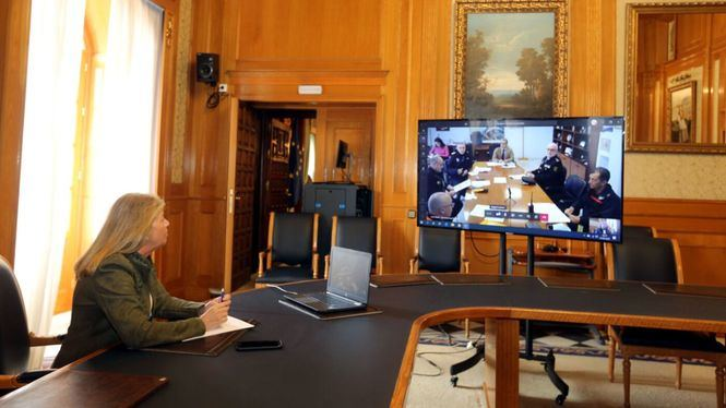 Marbella reforzará la seguridad incorporando drones