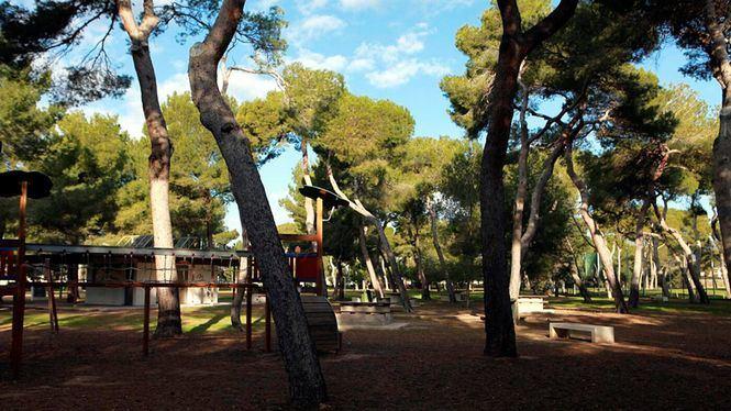 Paseo desde casa por cinco espacios verdes de Castellón