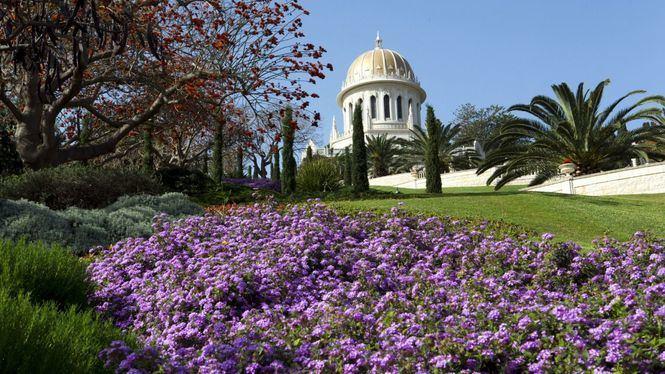 Un maravilloso viaje online por Israel