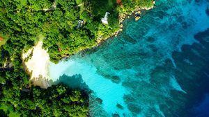 Curiosidades que ponen de manifiesto la singularidad de Jamaica