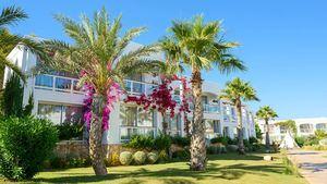 Destino Pacha Resort el 16 de julio abre sus puertas a una nueva temporada