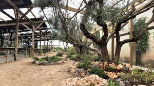 Sendaviva abre el 4 de julio con más animales, nuevos recintos y sorprendentes actividades