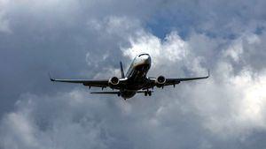 Aervio dispondrá de un millar de vuelos con 20 compañías aéreas diferentes