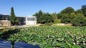 Jardín Botánico de Jerusalén