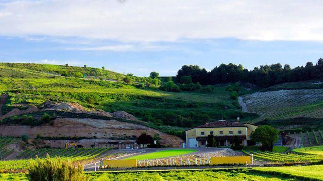 Vinos La Luz ha diseñado un programa para la recuperación de la actividad vitivinícola
