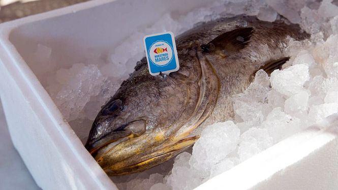 Sorteo entre las recetas más frescas para cocinar pescados