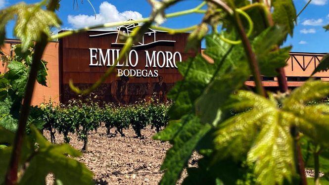 Emilio Moro vuelve a abrir sus puertas al enoturismo con nuevas experiencias