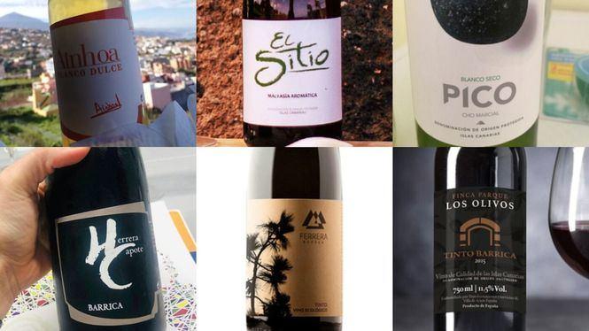 CanaryWine protagonistas del Concurso Oficial de Vinos Agrocanarias 2020