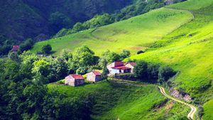 Consejos de nuestros pastores para disfrutar del ámbito rural sin dañarlo