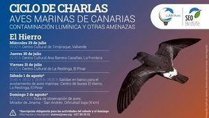 La supervivencia de las aves marinas Reserva a debate en la Biosfera de El Hierro