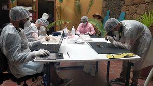 Universidades canarias llevan a cabo un estudio de la población bimbache en El Hierro
