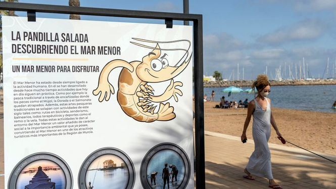 La exposición interactiva La Pandilla Salada, descubriendo el Mar Menor, llega a Mar de Cristal