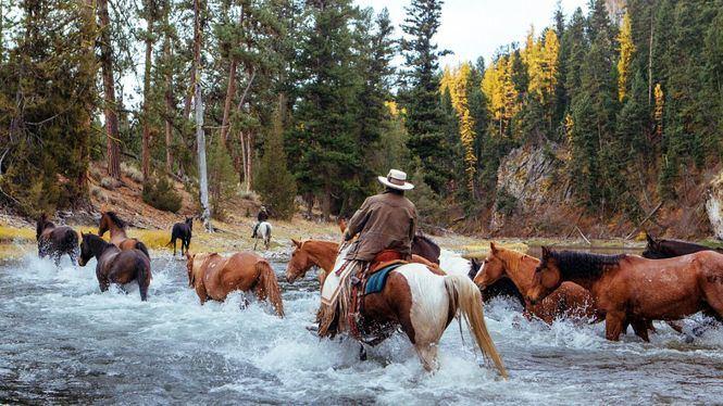 Experiencias al aire libre y de aventura en Estados Unidos