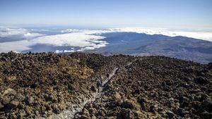 Tenerife, es en estos momentos el destino más seguro de Canarias