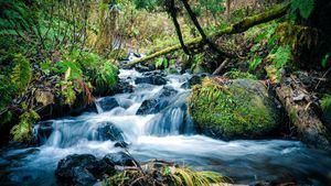 Avances de Microsoft en lo relacionado con el uso del agua de una forma más sostenible.