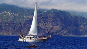 Madeira, un paraíso para disfrutar del mar
