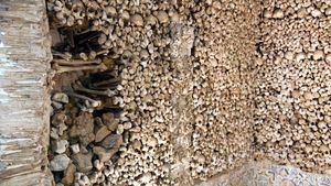 Lugares en los que los huesos, las calaveras y los esqueletos son los protagonistas