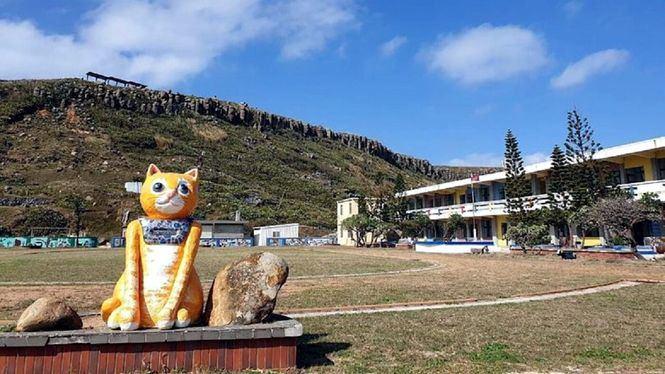 La isla de Hujing, Taiwán, promueve su imagen turística como un hogar para los gatos