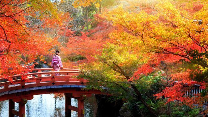 La promesa de Kioto: mejorar su bienestar